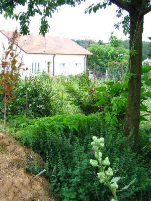 Abeceda zahrady